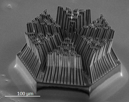 3D-printed_porous_stamp_Nanoscribe