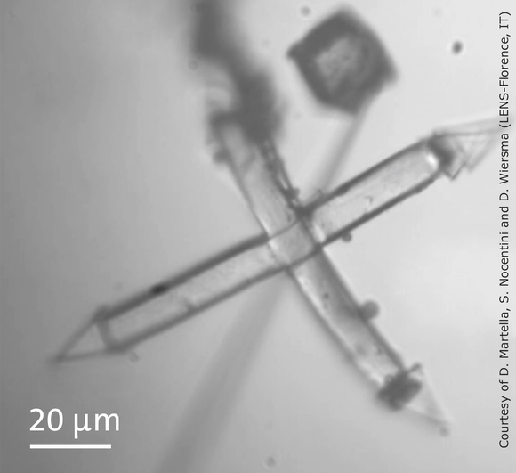 Nanoscribe_LENS_Micro Hand