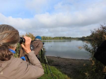 Vogelbeobachtung an den Schönauer Lachen. Foto: Beatrice Jeschke