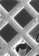 Im Blick des Rasterelektronenmikroskopes kann man die SURGELs auf einem gitterförmigen Träger erkennen. (Bild: Z. Wang/KIT)