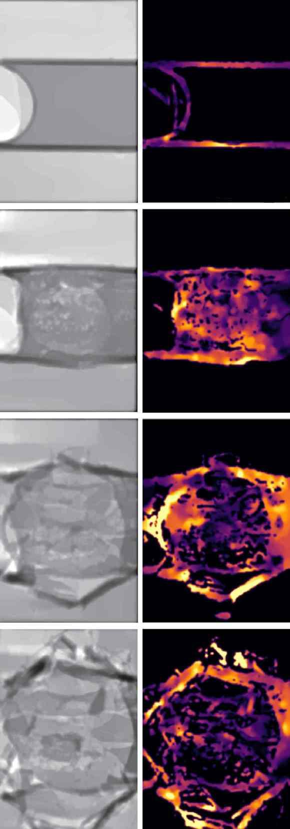 Die ersten sechs Mikrosekunden eines explodierenden Wasserröhrchens von etwa 200 Mikrometern Durchmesser nach zwei unterschiedlichen Analysemethoden (links: Graustufen nach Phasenverschiebung der Laserwellen, rechts: farbcodiertes Geschwindigkeitsfeld der Bruchstücke). (Bild: European XFEL)