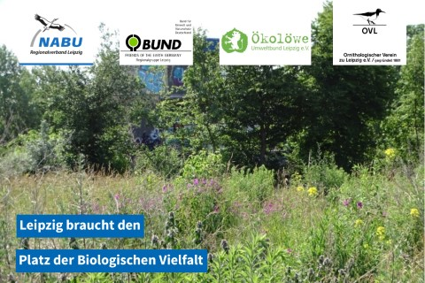 www.nabu-leipzig.de/stellungnahmen/bauen-und-natur-erhalten/